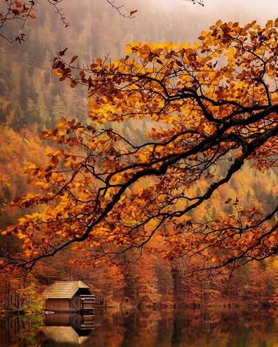 sonbahar ve yalnızlık